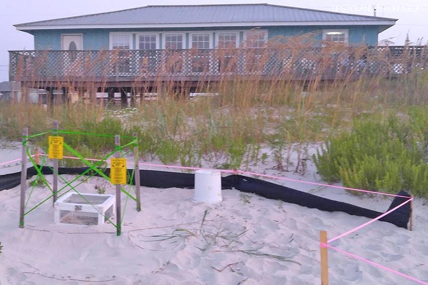 Absolutely Crabulous Beach Rental in Fort Morgan, Alabama
